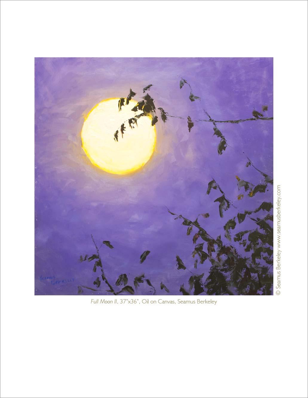 Full-Moon-Print-Seamus-Berkeley